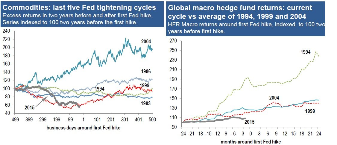 materias primas y hedge funds