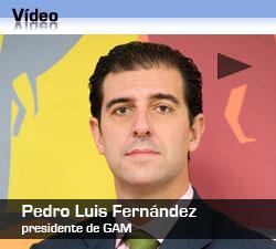 http://gestionatv.ondemand.flumotion.com/gestionatv/ondemand/estrategias/junio09/entrevista/gam_15jun.flv