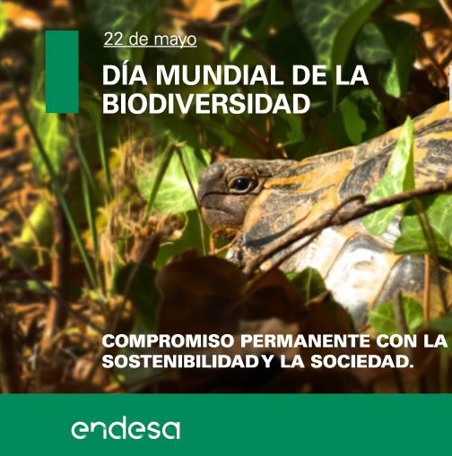 Proyectos_activos_de_Endesa_para_conservar_la_biodiversidad