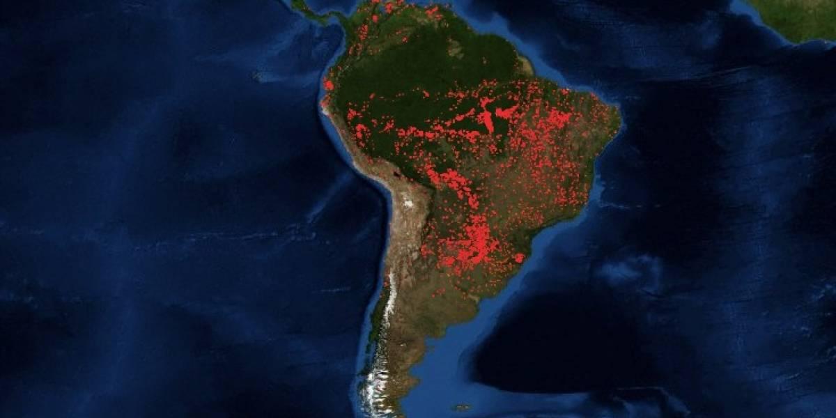 incendio_amazonas