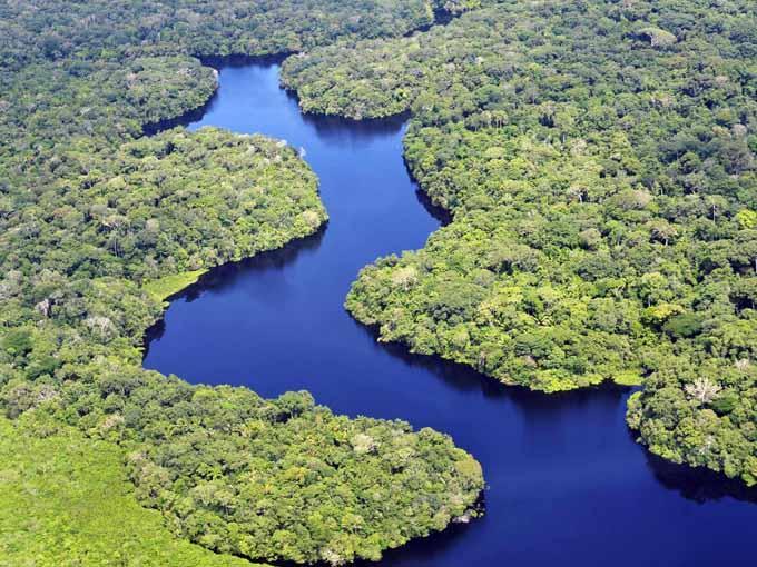 La amazonía en pie de guerra contra Amazon. Perú, Colombia, Ecuador y Bolivia reclaman el dominio '.amazon'